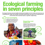 ecological farming 7 principles